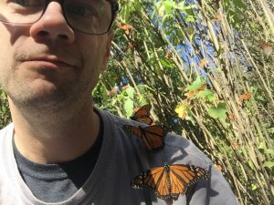 Brown butterfly spiritual meaning