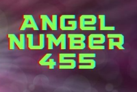 455 angel number means in love