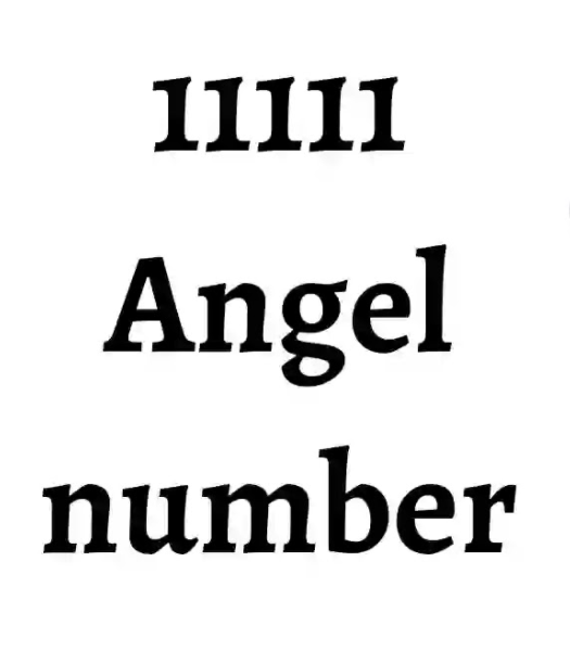 Meaning of number 11111