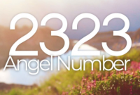 what does 2323 means?